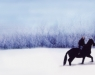 The Winter Stallion (1992)