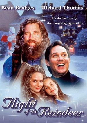 The Christmas Secret (aka Flight of the Reindeer) (2000)