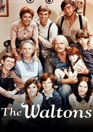 The Waltons: The Thanksgiving Story (1973)