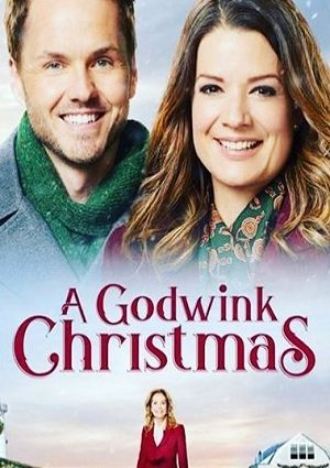 A Godwink Christmas (2018)
